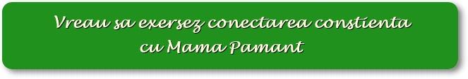 Exersarea constienta a conectarii cu Mama Pamant